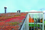 Firestone RubberGard EPDM Green roof