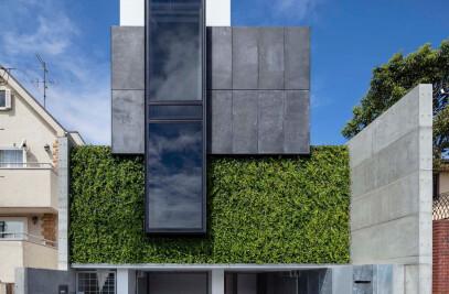 House on maple-tree hills