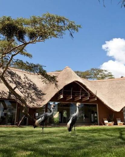 Solio Eco Lodge