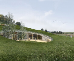A green roof covered with local vegetation