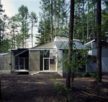 Gradation in the Forest House