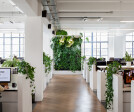 Space Matrix Shanghai office - Biophilia green office design