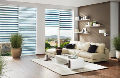 Double Roller Shades or Zebra Blinds