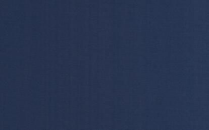 00077 Canvas Royal Blue
