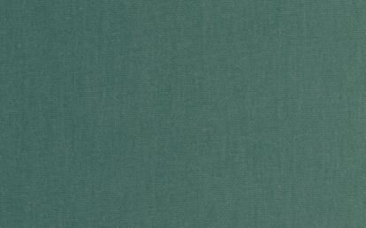 00124 Canvas Shamrock