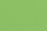 00138 Canvas Parrot Green