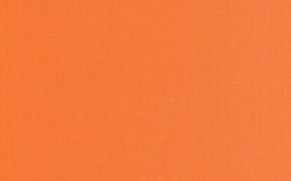 00139 Canvas Salamander