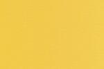 00916 Canvas Gold