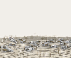 Organic Distribution of Structures over the township