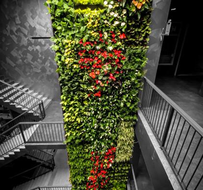 Living Green Walls