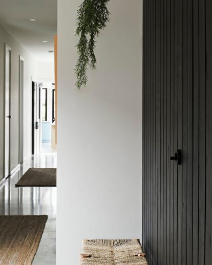 Bluebird Duplex