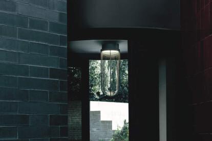 In Vitro Ceiling