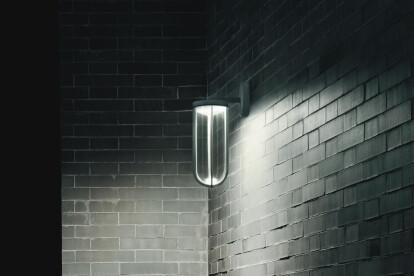 In Vitro Wall