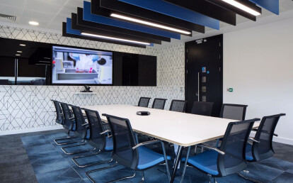 Freestyle Ceiling Baffles in Boardroom