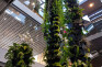 Plant column