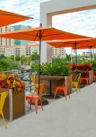 commercial Restaurant Planters