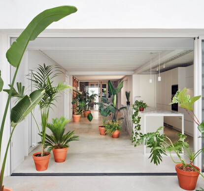 A house between party walls in Hostafrancs