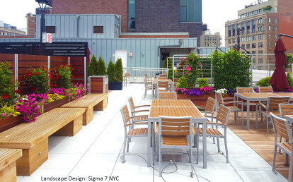 Roof deck restaurant planter mounted integral wood screen wall without penetrations