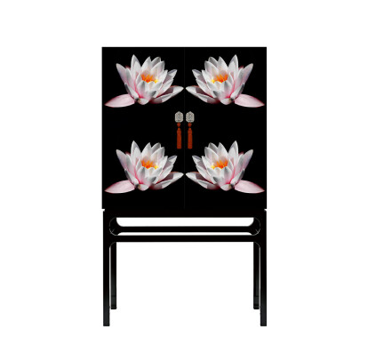 LOTUS Cabinet With Artistic Intervention by Axel Crieger