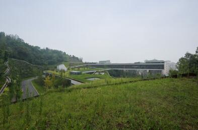 Community Center green roof details