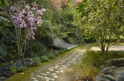 Hacienda Tiburon Landscape