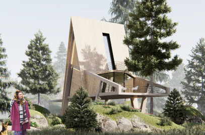 Modern Wood Cabin - CTB
