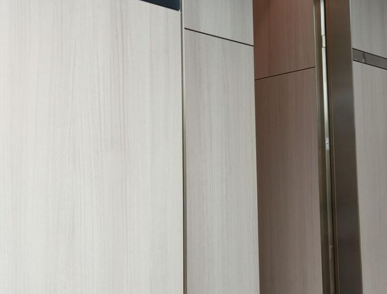 Clark Door Double Leaf Fire Rated Pivot Door