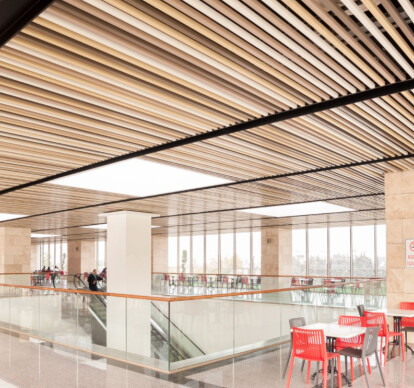 LINEAR SUSPENDED CEILING SYSTEM-TROYALINE-METAL