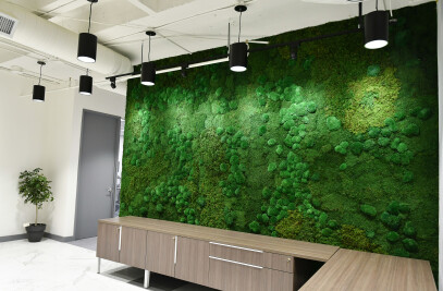 Mixed Moss Wall