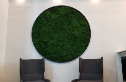 Mossart Wall (Sheet Moss)