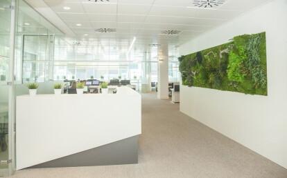 Vertical garden Moss&Plants Mid 3D