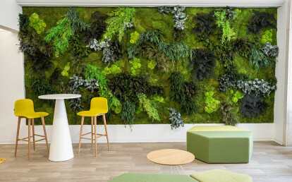 Vertical garden Moss&Plants Mid