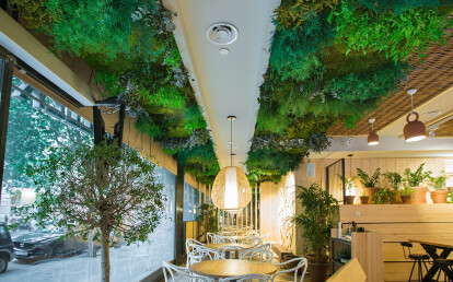 Green ceiling Moss&Plants Mid