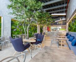 Vertical gardens by Greenarea