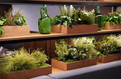 Planters / Jardineras Green Creativity