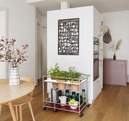 WORLD OF PLANTS FOR USM HALLER | Food trolley