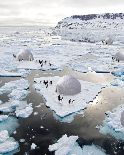 Penguins Protection System