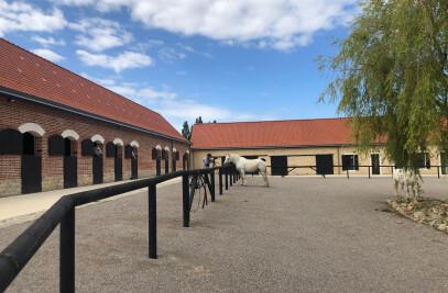 Boulonnais Horse House