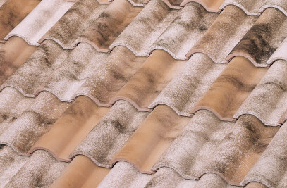 TB-12 CERAMIC ROOF TILE | NATURE LAMALOU®