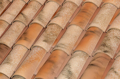 C-50.21 CELLER CURVED ROOF TILE | NATURE LAMALOU®