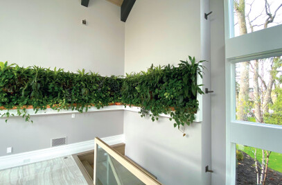 Humber Valley Living Wall - Residential