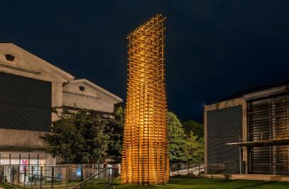 Burr Puzzle Tower