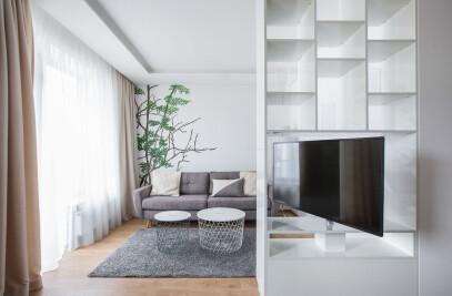 Bright, modern apartment