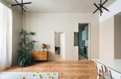 Stepped Volumes Apartment