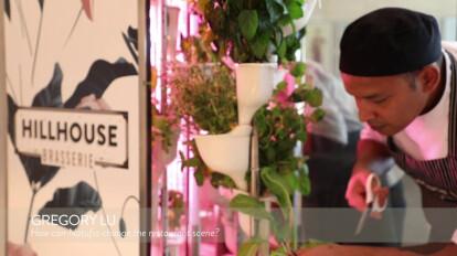 Natufia at Hillhouse Brasserie in Dubai