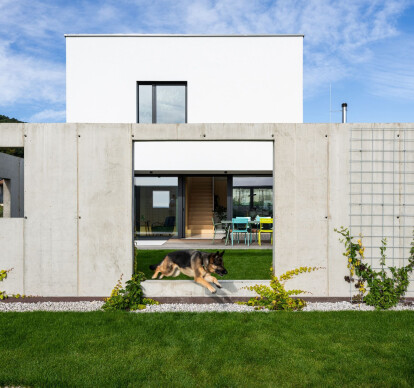 House for a Family with Pets