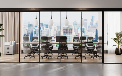 Conference room: EXPO in brushed black anodized finish