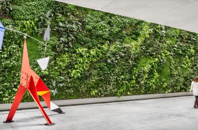 San Francisco Museum of Modern Art living wall planting plan