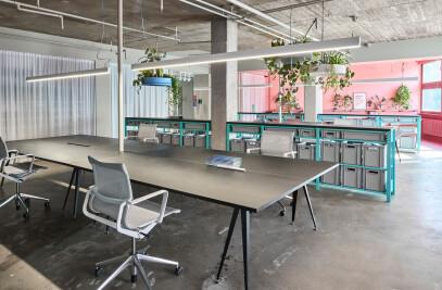 Pirol - Office