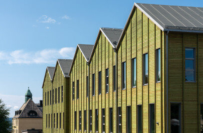 Thermowood cladding